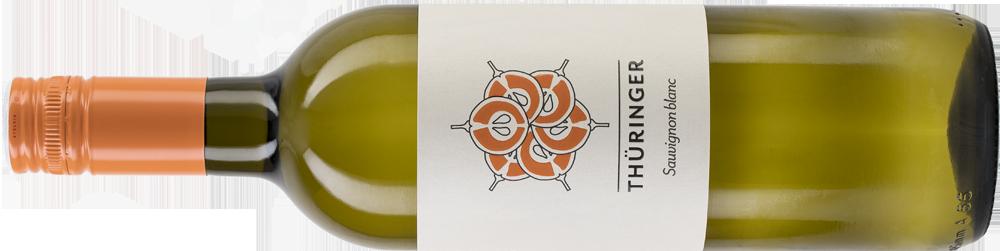 Sauvignon Blanc PNG Web